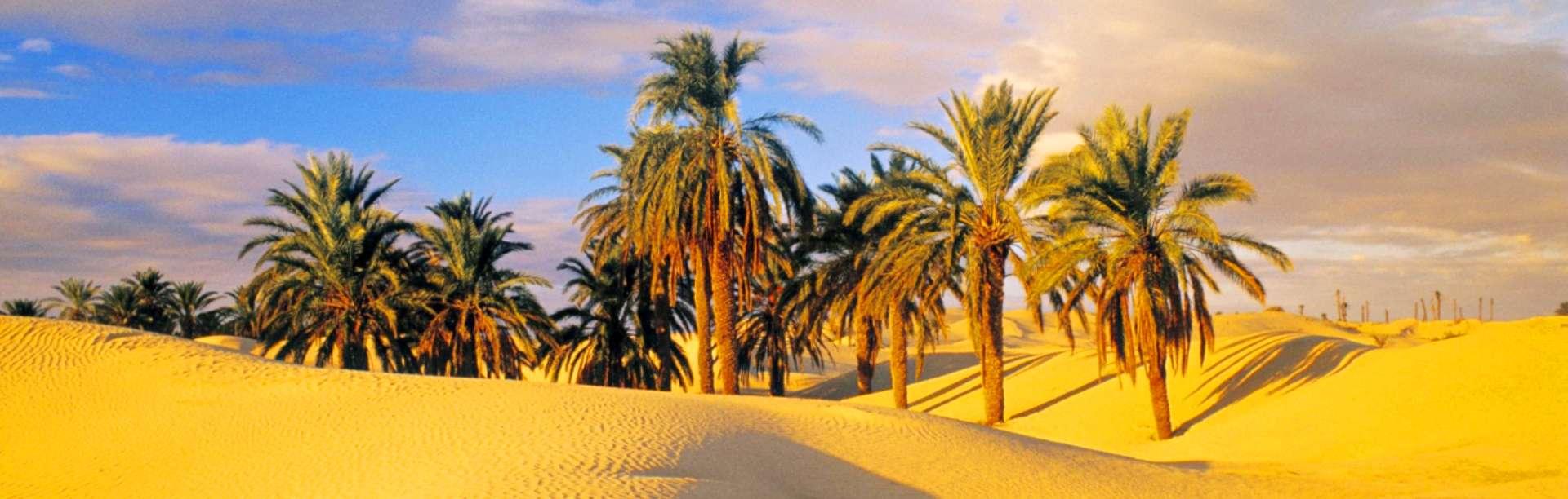Оазис в пустыне, Тунис